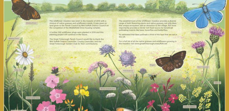 Finborough Wildflower Meadow Interpretation