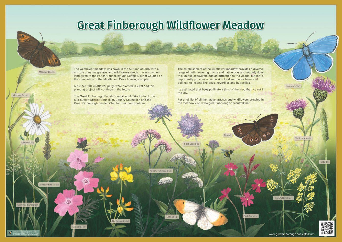 Wildflower Meadow Interpretation Board